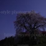 月夜の又兵衛桜を撮って思うこと