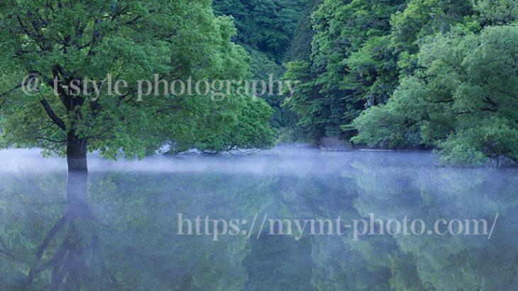 早朝の室生湖に行くと幻想的な景色が広がっていた!
