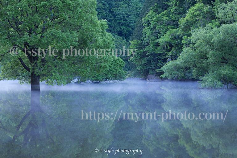 早朝の室生湖