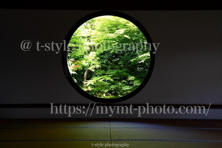 新緑の源光庵。悟りの窓