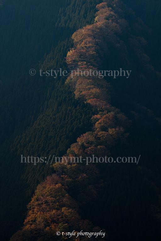ナメゴ谷の紅葉
