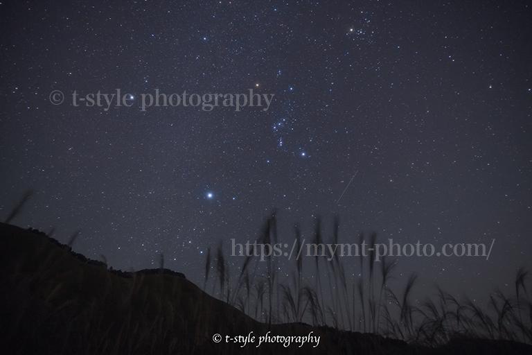 曽爾高原で撮影したススキとオリオン座