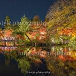 これは必見!永観堂禅林寺の紅葉ライトアップとリフレクション