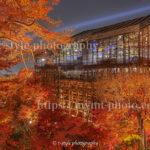 素屋根を纏った清水寺の紅葉ライトアップも美しかった!