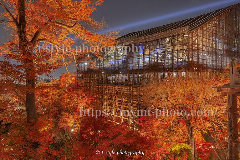 清水寺の紅葉ライトアップ