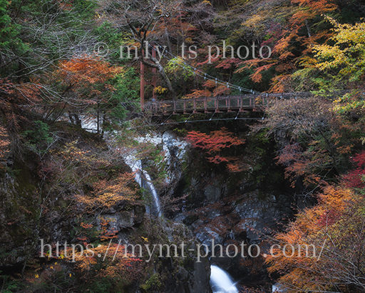 今年もみたらい渓谷の紅葉を撮ってきた!