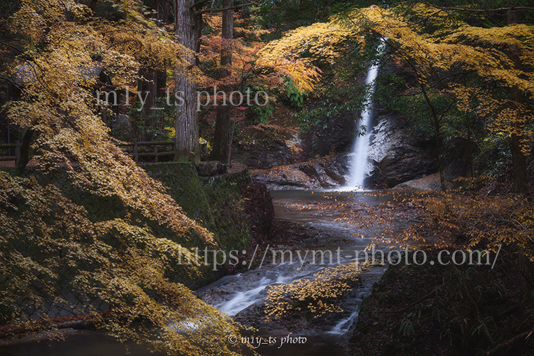 投石の滝の紅葉