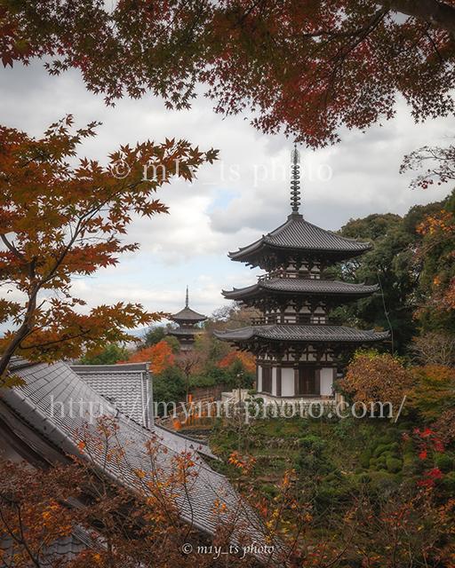 紅葉シーズンに當麻寺西南院から見た西塔と東塔