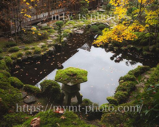紅葉降り注ぐ庭園〜當麻寺 塔頭 西南院の庭園が美しい〜